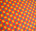 Rcircuswheels-ybrrevrgb_comment_187987_thumb
