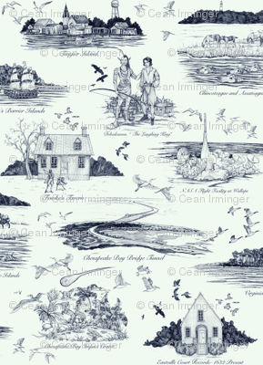 The Eastern Shore of Virginia, a history in toile