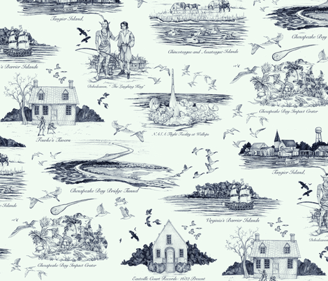 The Eastern Shore of Virginia, a history in toile fabric by ceanirminger on Spoonflower - custom fabric