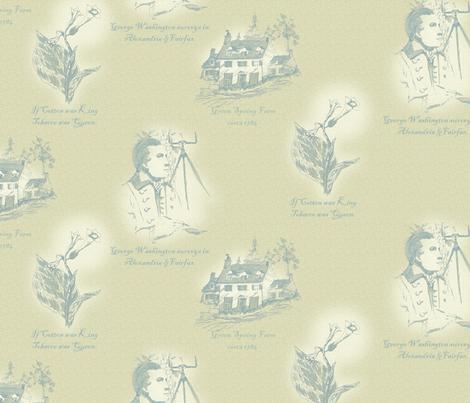 Annandale_Virginia II fabric by glimmericks on Spoonflower - custom fabric