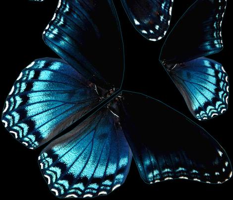 Blue Butterfly Wings fabric by janelle_wooten on Spoonflower - custom fabric