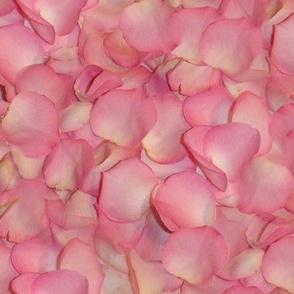 Rose's Petals