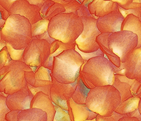 Donna's Petals fabric by peacoquettedesigns on Spoonflower - custom fabric