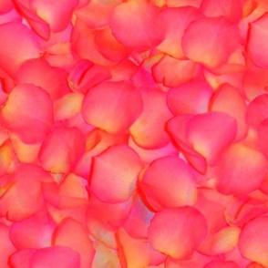 Astrid's Petals