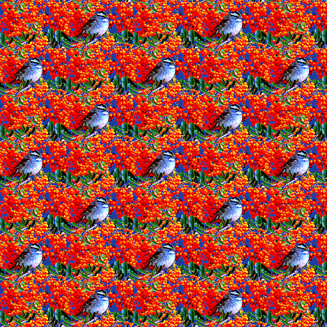 White Throated Sparrow and Berries fabric by robin_rice on Spoonflower - custom fabric