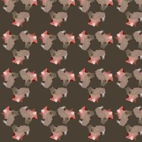 starfisholive
