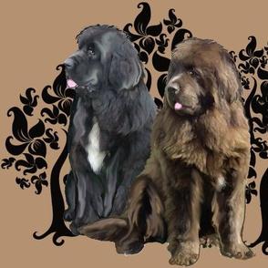 brown and black Newfoundland dog fabric