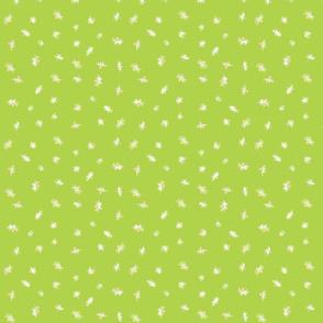 chamomilla_green