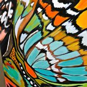 Hi res crop mariposa 1