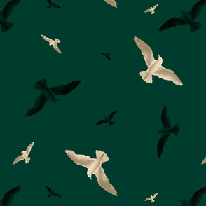 Seagulls over the forest