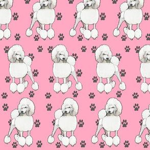 Poodles In Pink