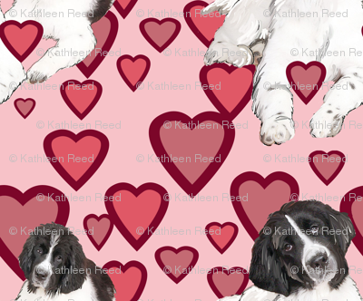 Hearts and Landseer Newfoundland dogs
