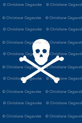 Navy Skull and Crossbones