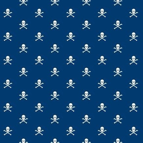 Navy Skull and Crossbones