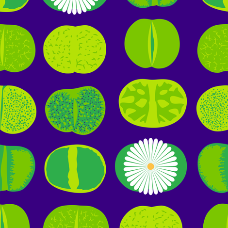 Lithops (Purple) fabric by nekineko on Spoonflower - custom fabric