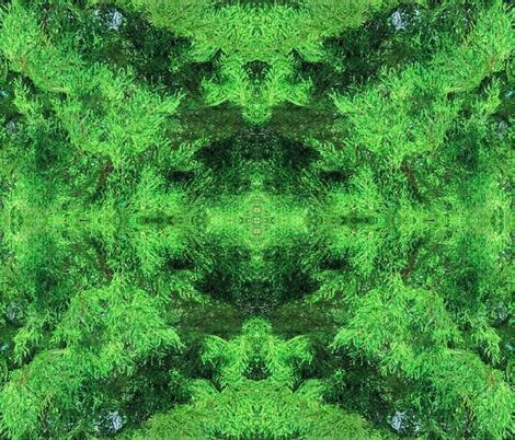 cypress fabric by anniedeb on Spoonflower - custom fabric