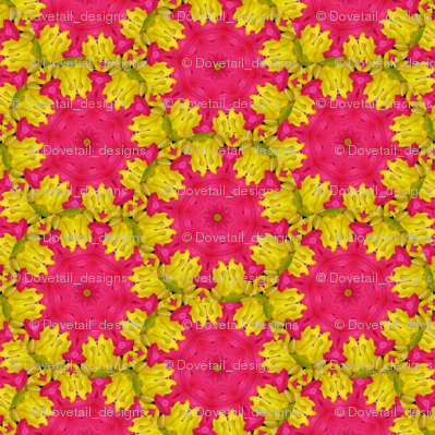 Peter's Painted Petals - Flower Power 17