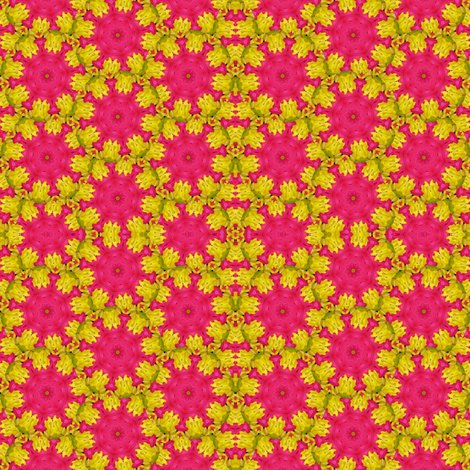Rrpeter_s_flowers_8543__scope_5_copy_shop_preview
