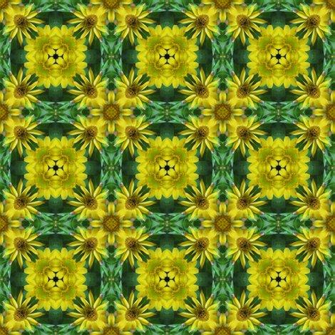 Rrryellow_daisies__kaleidos_1_shop_preview