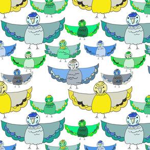 Parakeets flock