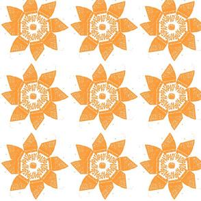 orangeparkingflower
