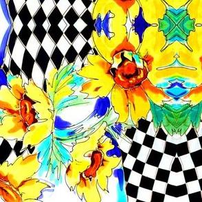 Sunflower Harlequin