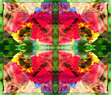 Rrsunflower_burst_10313_resized_shop_preview