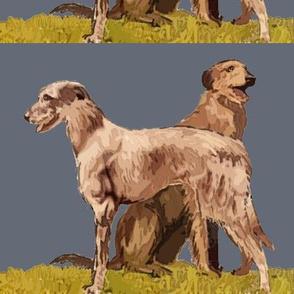 Scottish_deerhounds