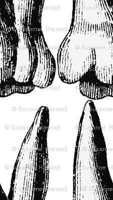 teeth one direction black and white