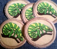 Chameleon Patrol Patches