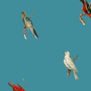 Birds Galore - Petrolium Blue
