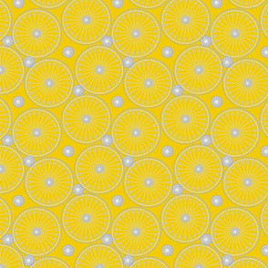 bicycle wheels and gears - meyers lemon