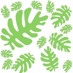 Funky Tropical Leaf Pattern! (green & white)