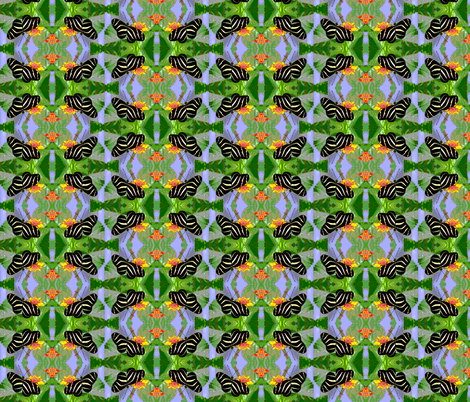 Zebra Longwing Butterfly fabric by eclectic_house on Spoonflower - custom fabric