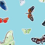 Rrrrbutterflies_and_daisy_pattern_with_stroke_rotated_12in_rgb_27in_360_shop_thumb