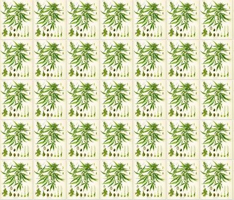 Rrrrrrrhemp-botanical-chart_shop_preview