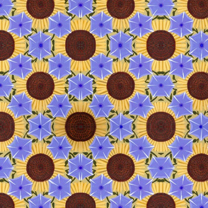 sunflowers_and_morning_glories_2
