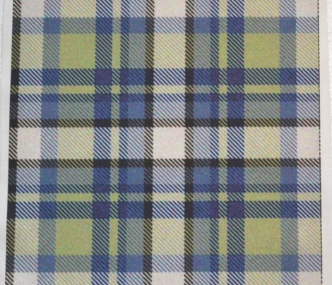 Rrmoss_and_blue_tartan_comment_268565_preview