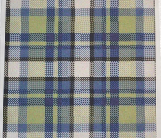 Rrmoss_and_blue_tartan_comment_268565_thumb