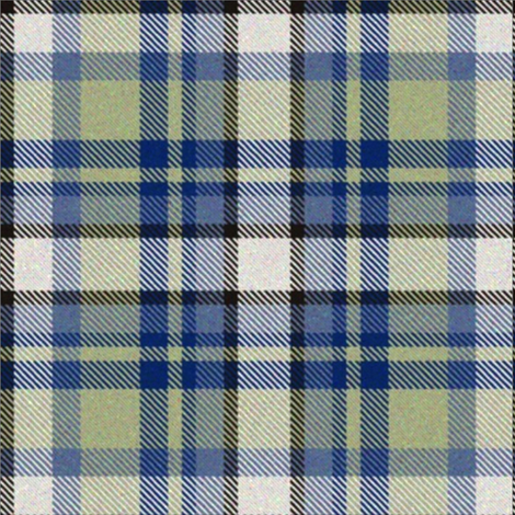 Moss and Blue Tartan fabric by eclectic_house on Spoonflower - custom fabric