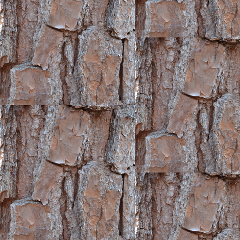 Tree Bark fabric by megankaydesign on Spoonflower - custom fabric