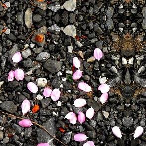petal drop