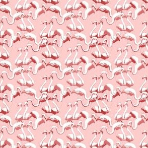Plastic Flamingos - Pink