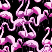 Rflamingos_black_shop_thumb