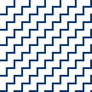 Bias Zig Zag - Navy on White
