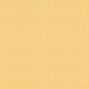 grids (custard)