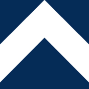 Navy Chevron