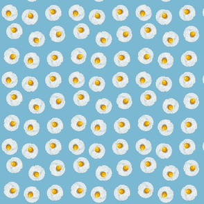 Eggs on Blue