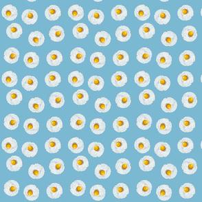 Eggs on Blue