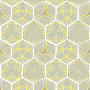 Urban_Sightings_Curves_Honeycomb